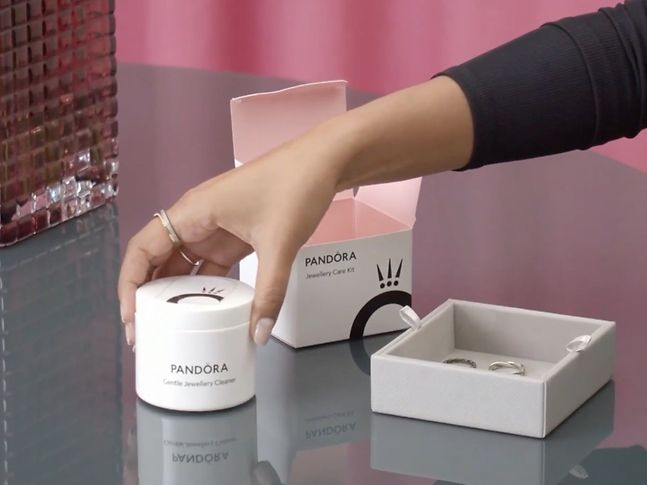 Pandora cleaning kit and accessories